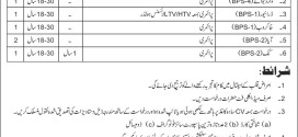 Army Cardiac Centre Lahore Jobs 2015 Latest July Advertisement