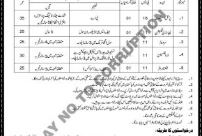 National Highway Authority Pakistan NHA Jobs 2016 Form www.nha.gov.pk