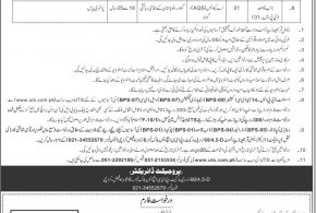 Punjab University Pu Professor Associates Assistant Jobs