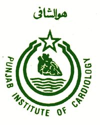Punjab Institute Of Cardiology Lahore House Job 2018 MBBS Graduate How To Apply