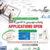 CM Punjab e-Rozgar Scheme 2018 Training Registration For Graduate Form