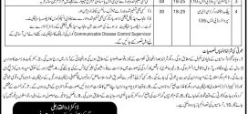 District Health Authority Lahore NTS Jobs 2017 Data Entry, Stenographer, Clerk Form