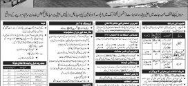 Pakistan Navy Sailor Jobs Batch B-2017 Female Medical Technician Vacancies