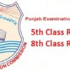 Check PEC 5th And 8th Class Result 2017 Online Now