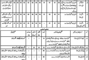 Social Welfare Special Education Department Balochistan Jobs 2017