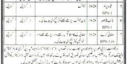 Irrigation Department Sindh Karachi Jobs 2017 Interview Application Form
