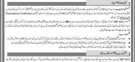State Bank of Pakistan OG-04 Jobs 2017 SBP BSC www.sbp.org.pk Application Online form