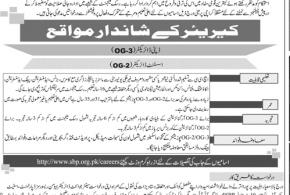 State Bank of Pakistan OG-3, OG2 SBP Jobs 2017 Deputy and Assistant Director