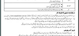 Pakistan Civil Aviation Authority Jobs 2017 Salaries, Application Form Advertisement