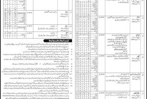 Intelligence Bureau Pakistan Jobs 2017 NTS IB Application Form For Intermediate, Primary, Matric