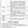 Lady Aitchison Hospital Lahore Jobs 2017 September Advertisement