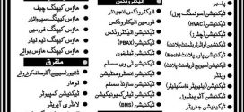 Saudi Arabia Bin Laden Group Jobs 2017 Application Form How to Apply