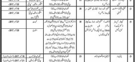 Population Welfare Department Balochistan Jobs 2017 Written Test, Interview, Application Form