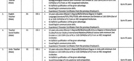 Daanish School Jobs 2018 Application Form, Eligibility Criteria, Salary
