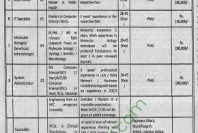 Primary and Secondary Healthcare Department Punjab NTS Jobs 2018 Advertisements Application Form Download