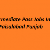 Intermediate Pass Jobs In Faisalabad 2018 Last Date How To Apply GOVT Advertisements