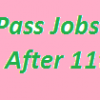 Intermediate Pass Jobs in Punjab 2018 GOVT Vacancies After 11th Class