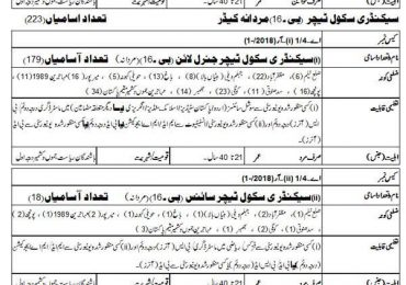 AJK Subject Specialist Jobs 2018 AJKPSC Apply Online Form Registration Date