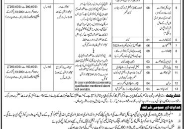 Wapda Medical Services Doctors Jobs 2018 Application Form Online Last Date